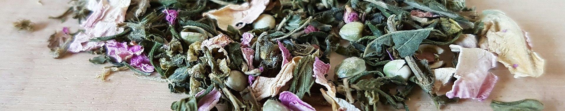 Pomladanska konopljina čajanka